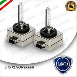 Coppia lampade D1S
