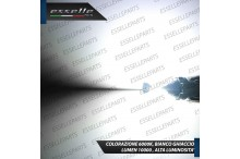 Kit Full LED Fendinebbia H1 10000 LUMEN CITROEN XANTIA