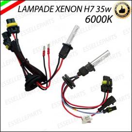 Lampade Xenon H7
