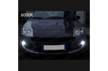 Luci Fendinebbia H8 LED SMART FORFOUR I