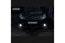 Luci Fendinebbia H11 LED C-CROSSER