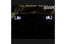 Luci Angel Eyes LED H8 X6 E71